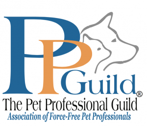 logo PPGuild